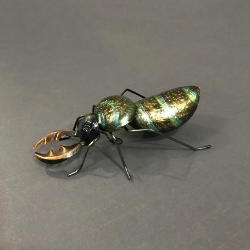 Tin bug